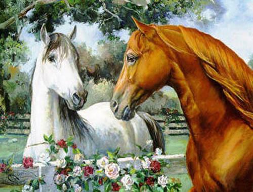 """Предпросмотр схемы вышивки  """"пара лошадей """". пара лошадей, лошадь, лошади, пара, любовь, животные, предпросмотр."""